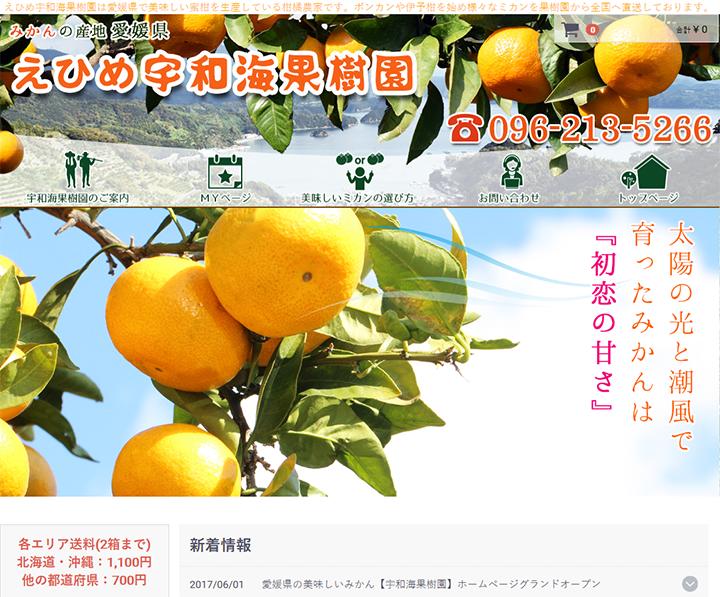 愛媛県の美味しいみかん【えひめ宇和海果樹園】/ 愛媛県の蜜柑