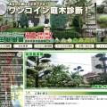 ワンコイン庭木診断【嶋田庭樹園】ホームページ制作!