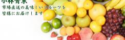果物と野菜の市場直送【小林青果】ホームページ制作